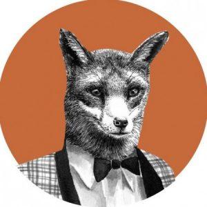 Profile photo of Sinead Koehler